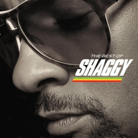 Cover of the track The Best of Shaggy