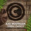 Couverture de l'album Tribal Dance - Single