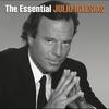 Cover of the album The Essential