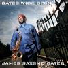 Couverture de l'album Gates Wide Open