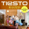 Couverture du titre wasted (ummet ozcan mix)