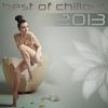 Couverture de l'album Best Of Chillout 2013