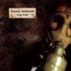 Couverture de l'album Evig pint