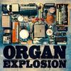 Couverture de l'album Organ Explosion