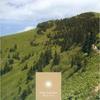 Couverture de l'album Noon - Ozella Compilation