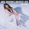 Cover of the album Juice Newton's Greatest Hits (and More)