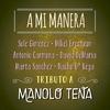 Couverture de l'album A Mi Manera - Tributo a Manolo Tena