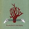 Cover of the album Aboa Sleeping
