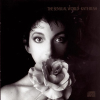 Cover of the track The Sensual World
