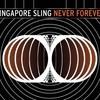 Couverture de l'album Never Forever