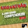 Cover of the album Shishkebab: A Jam Band Compendium, Volume 1