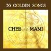 Couverture de l'album 36 Golden Songs of Cheb Mami