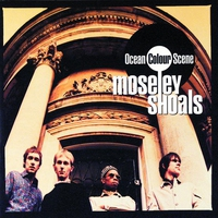 Cover of the track Moseley Shoals