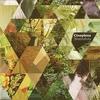 Couverture de l'album Nuevahola