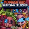 Couverture de l'album Mixmash 2012 Countdown Selection