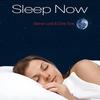 Cover of the album Sleep Now