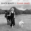 Cover of the album Black Beauty