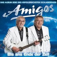 Cover of the track Bis ans Ende der Zeit