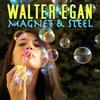 Couverture de l'album Magnet & Steel