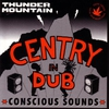 Cover of the album Thunder Mountain - A Dubwise Selection