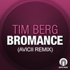 Cover of the track Bromance (Avicii's radio edit)