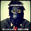 Couverture de l'album Banana Beats - EP