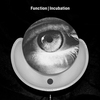 Cover of the album Incubation