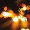 Couverture de l'album Vibrant Forms II