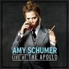 Couverture de l'album Live at the Apollo