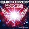 Cover of the track Wings (Thomas Petersen vs. Gainworx remix)