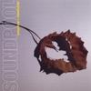 Couverture de l'album Dichotomies & Dreamland