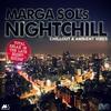 Couverture de l'album Nightchill (Chillout & Ambient Vibes)