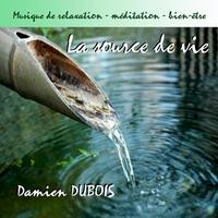 Cover of the track La source de vie