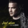 Couverture de l'album Feel Alive