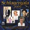 Cover of the album Schlagergala 2009 - Vol. 6