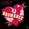 Cover of the track Seek Bromance (Avicii vocal edit)