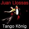 Couverture de l'album Tango König
