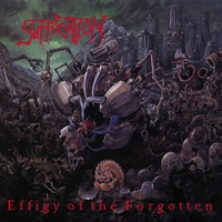 Cover of the track Effigy of the Forgotten