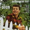 Couverture de l'album Runaround Sue
