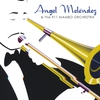 Cover of the album Angel Melendez & The 911 Mambo Orchestra