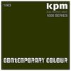 Couverture de l'album KPM 1000 Series: Contemporary Colour