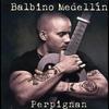 Couverture de l'album Perpignan - Single