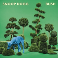 Cover of the track BUSH