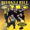 Cover of the album Propustka do pekel