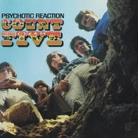 Cover of the track Psychotic Reaction