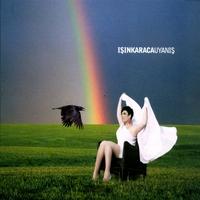 Cover of the track Uyanış