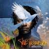 Cover of the album The Traveller