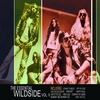 Couverture de l'album The Essential Wildside Vol II