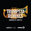 Cover of the album Trumpsta (feat. Treyy G) [Djuro Remix] - Single