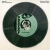 Couverture de l'album Dubbing With the Observer